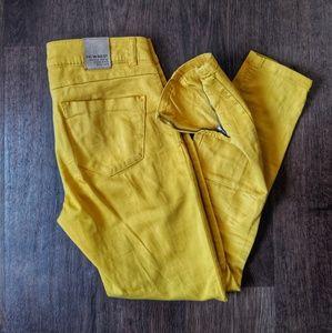 Zara Mustard Moto Jeans
